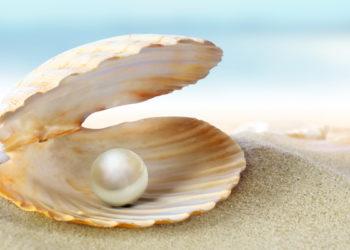 blog-La-perle-rare-n-existe-pa